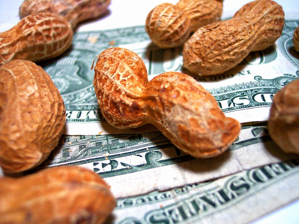 garnished-wages-money-peanuts-debt