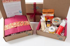 Makeup Subscription Boxes Business Plan Template