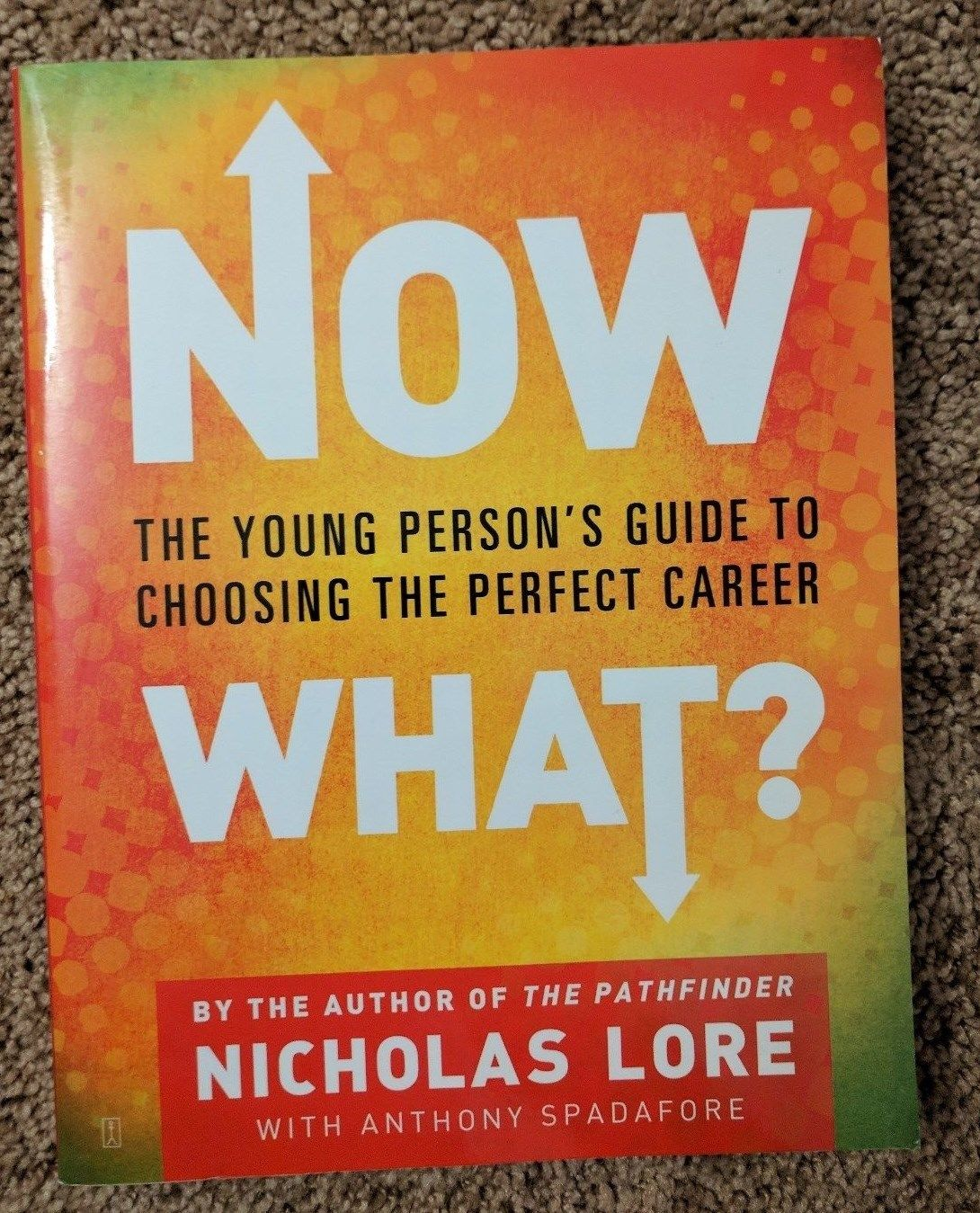 Now What The Young Person's Guide to Choosing the Perfect Career (Nicholas Lore)